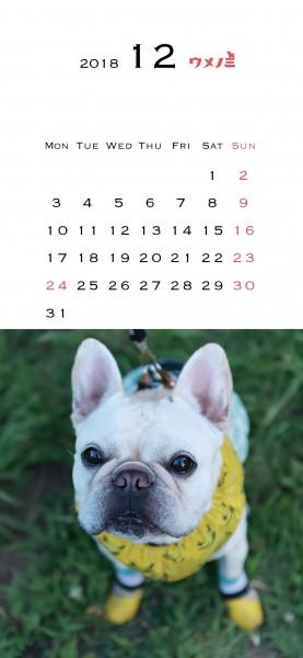 スマホうめのみカレンダー2018.12