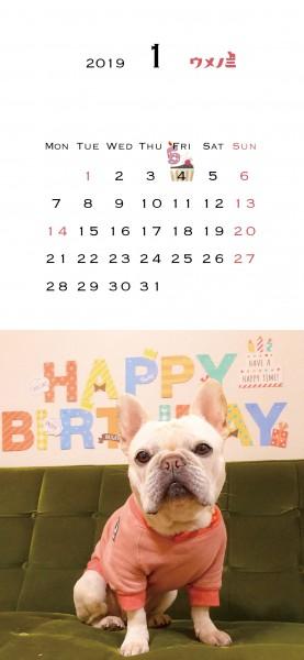 スマホこうめさんカレンダー2019.1