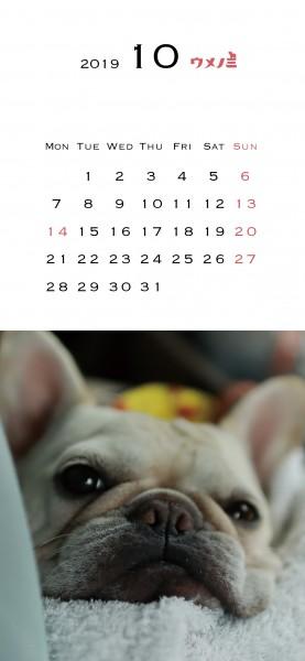 スマホこうめさんカレンダー2019.10