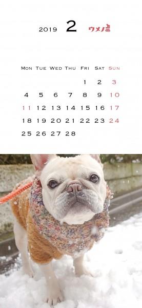 スマホこうめさんカレンダー2019.2