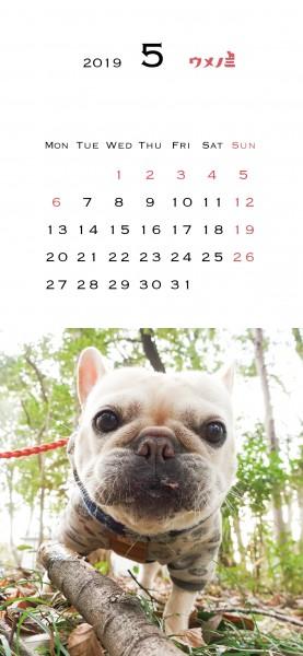 スマホこうめさんカレンダー2019.5改定