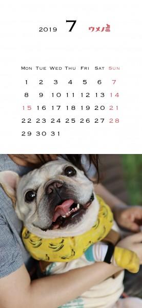 スマホこうめさんカレンダー2019.7