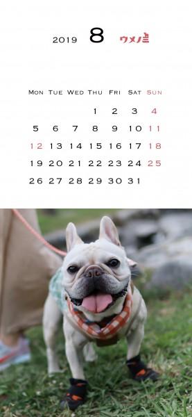 スマホこうめさんカレンダー2019.8