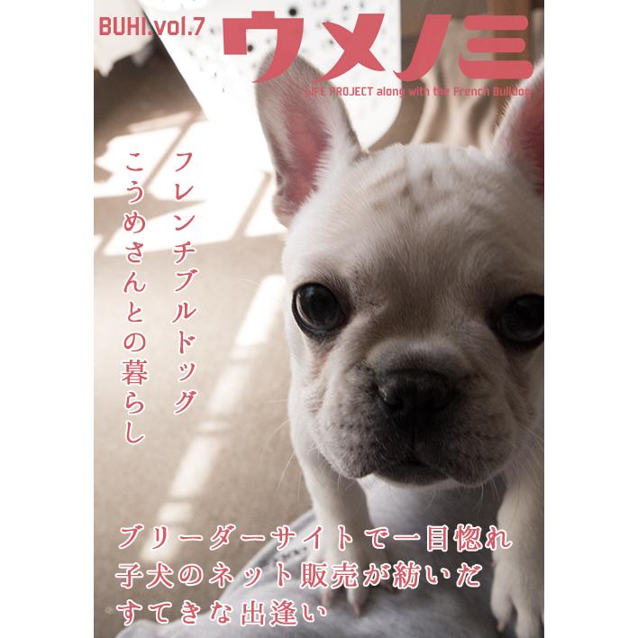 bookbuhi7
