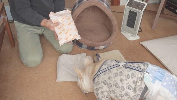 犬のかまくらドーム型ベッドゆたぽん