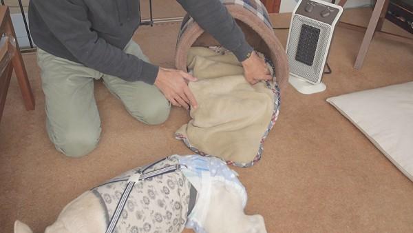 犬のかまくらドーム型ベッドブランケット