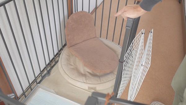 犬のかまくらドーム型ベッド2