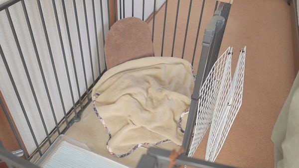 犬のかまくらドーム型ベッドブランケット2