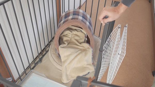 犬のかまくらドーム型ベッド寝る