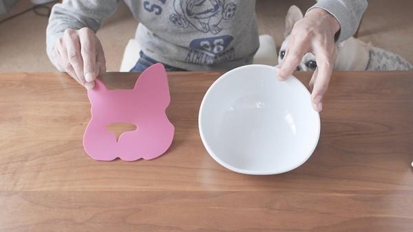 フレンチブルドッグ専用食器「BUHIプレ」3