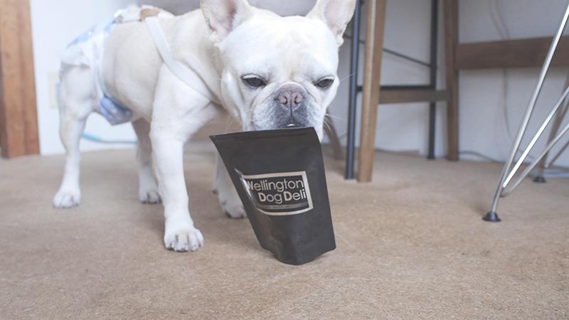 いま話題のグリーントライプ犬のおやつラムトライプをあげてみた