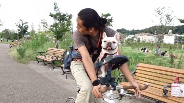 Buddyriderバディライダー犬用ペット乗せ自転車12
