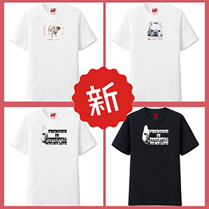 フレンチブルドッグこうめさんTシャツ2018