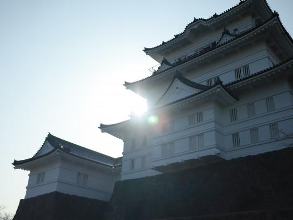 小田原城で犬とお散歩