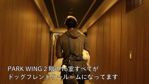 シェラトングランデ東京ベイのドッグラバーズスイート5