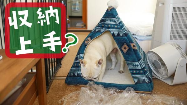 犬テントベッドサイズ