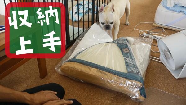 犬テントベッド