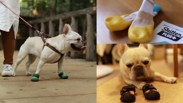 犬靴いろいろ