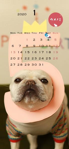 スマホこうめさんカレンダー2020.1