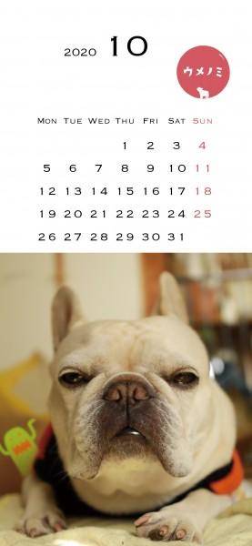 スマホこうめさんカレンダー2020.10