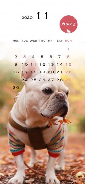 スマホこうめさんカレンダー2020.11