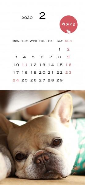 スマホこうめさんカレンダー2020.2