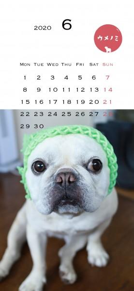 スマホこうめさんカレンダー2020.6