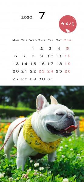 スマホこうめさんカレンダー2020.7