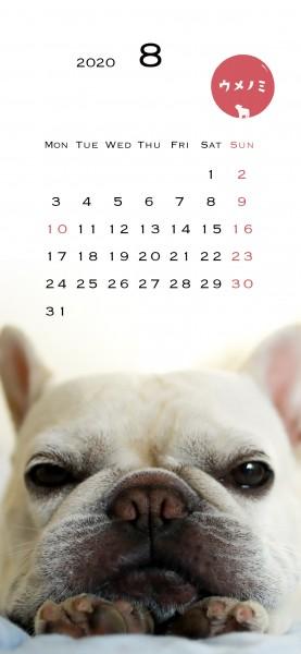 スマホこうめさんカレンダー2020.8