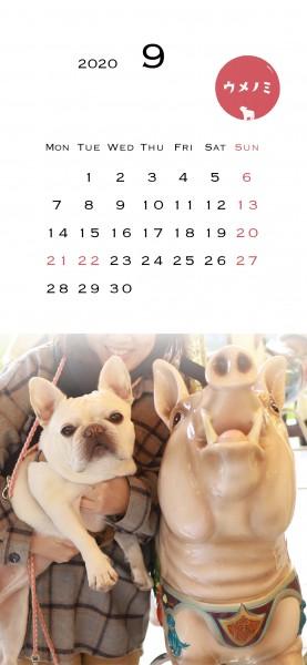 スマホこうめさんカレンダー2020.9