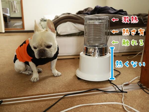 電気ストーブ場所別熱さ