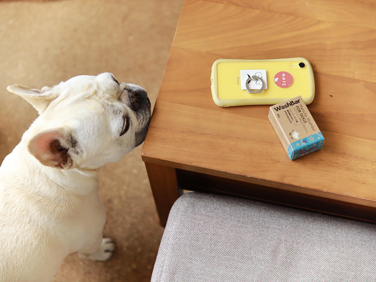 マヌカ・ウォッシュバー石鹸シャンプー犬