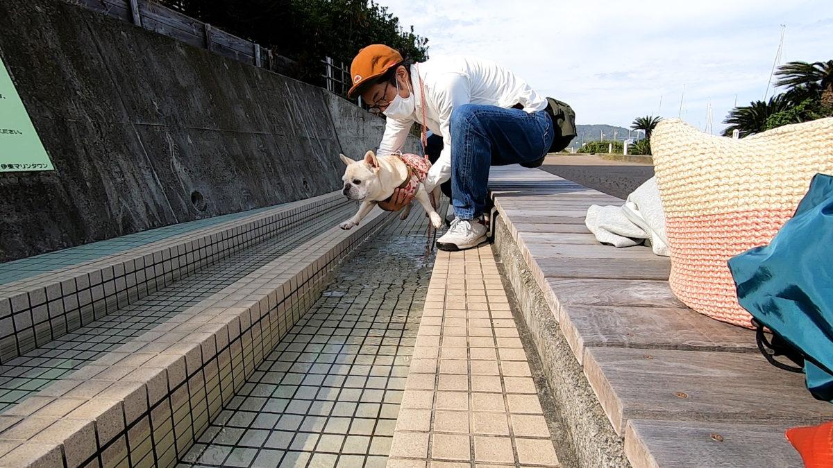 伊東マリンタウン犬の足湯